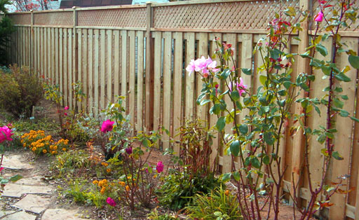 Fencing-and-garden-work-in-Mundesley